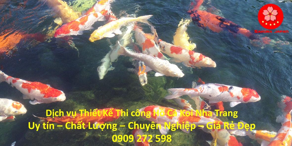 Làm Thi Công Hồ Cá Koi Nha Trang Đẹp Nhất