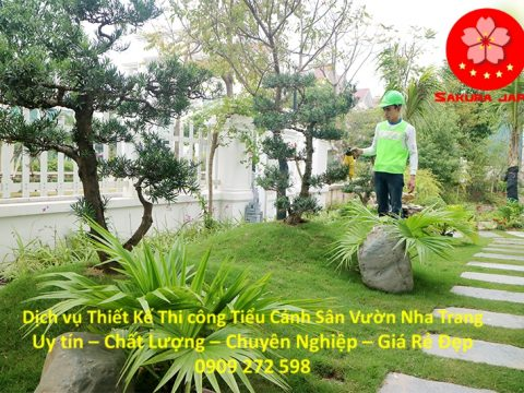 Tiểu Cảnh Sân Vườn Nha Trang
